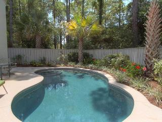 Beautiful House with Internet Access and Television - Hilton Head vacation rentals