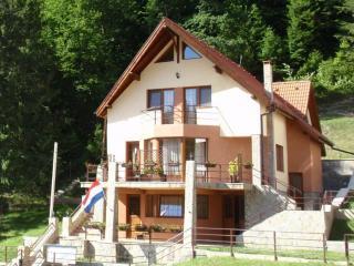 FrontViewSummer.JPG - Villa Casa 0landeza rental chalet Transylvania - Brasov - rentals