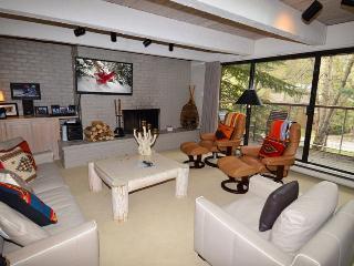 ChEau15 - Aspen vacation rentals