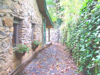 Peaceful Romantic Asheville Cottage Hot Tub, Wi-Fi - Asheville vacation rentals