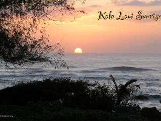 KL #103-Beautiful 1 BR 1.5 bath with King Bed, W/D - Lihue vacation rentals