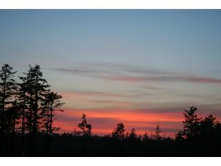 Bella Tramonto - Your Pacific Rim Oasis - Ucluelet vacation rentals