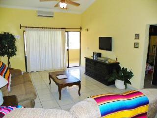 2 Bedroom Condo- in  the Center piece of Cabo- - Cabo San Lucas vacation rentals