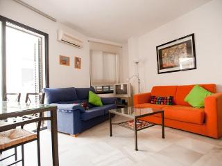 2Br Terrace Patio, Wifi, Parking(HEART of SEVILLE) - Seville vacation rentals