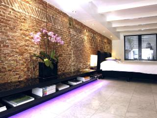 Amsterdam Boutique Apartments Private design suite - Amsterdam vacation rentals