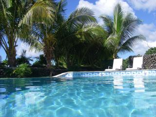 Plan Your Escape- Private Pool, View, Maid Service - Rakiraki vacation rentals