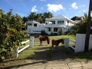 Bravos House Vieques Waterview Villa with Pool - Isla de Vieques vacation rentals