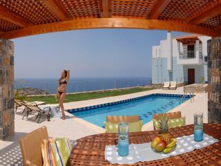 Villa: Breakfast, Pr. pool w Jacuzzi, Sauna-Gym - Rethymnon vacation rentals