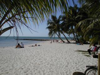 Tropical Paradise on the Atlantic Ocean - Key West vacation rentals