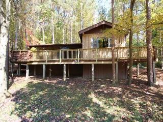 Marsh Hollow: Pinewood Cabin in the Hocking Hills - Laurelville vacation rentals