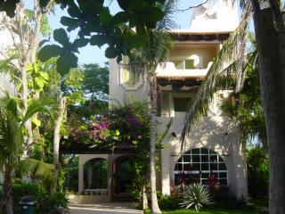 Super Location 3/4 Buena Madera house with Pool - Image 1 - Playa del Carmen - rentals