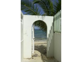 Beach Gate a Few Feet from Front Door - Beachfront Bungalow With Pool in Vieques Isle, PR - Vieques - rentals