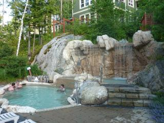 Tremblant-Les-Eaux,Deluxe Condo,1600sq,Spa,SKI-out - Mont Tremblant vacation rentals