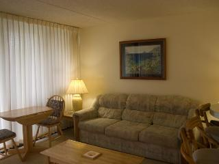 Waikiki Banyan Tower 1 Suite 612 - Honolulu vacation rentals