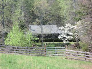 Family Cabin - sleeps 9 - wheelchair/pet friendly - Blue Ridge Mountains vacation rentals