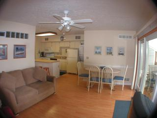 Lake Erie Pristine  Waterfronts Condo Sandy Beach - Kelleys Island vacation rentals