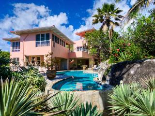 Bigger Splash, Private Villa-The Baths w/Concierge - The Baths vacation rentals