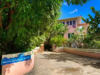 Bigger Splash, Private Villa by The Baths - The Baths vacation rentals