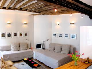 Architect's Stylish Apt Marais/Bastille - Paris vacation rentals