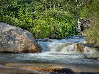The River Jewel Suites- Sequoia Park RIVERFRONT - Badger vacation rentals