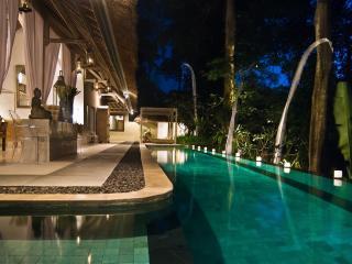SUNGAI+GOLD luxury private villas Bali [1-6 rooms] - Canggu vacation rentals