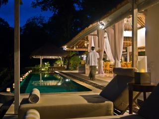 SUNGAI+GOLD luxury private villas Bali [1-6 rooms] - Canggu vacation rentals