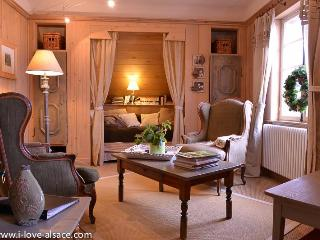 Between Strasbourg and Colmar, with a spectacular mountain view - La Vancelle vacation rentals