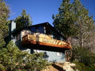 Moonridge Vistas - Image 1 - Big Bear Lake - rentals