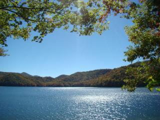 Actual View from our Dock - Lakefront 4/3.5 Home,Gated,Dock,Kayaks, Canoe,Wifi - Lake Nantahala - rentals