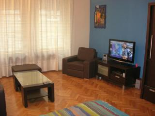 Beautiful Condo with Internet Access and A/C - Budapest vacation rentals
