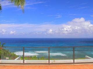 Puu Poa 401: oceanfront luxury with a/c, Bali Hai views and complete privacy - Princeville vacation rentals