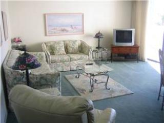 2BR gulf side unit with patio #205GS - Image 1 - Sarasota - rentals