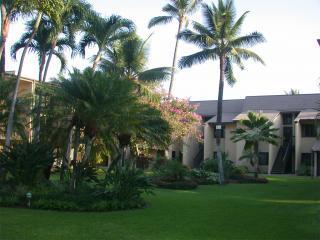 2015 DATES $89/NT!-Great Maui Condo,Steps to Beach - Wailea-Makena vacation rentals
