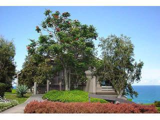 Kauai Oceanfront Condo Overlooking Hanalei Bay - Princeville vacation rentals