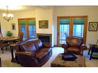 living room fp - A luxury townhome in downtown Durango - Durango - rentals