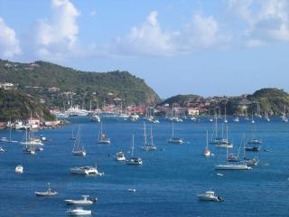 Convenient 1 bedroom House in Saint Barthelemy - Saint Barthelemy vacation rentals