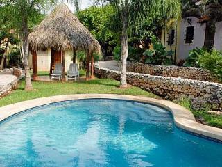 Affordable 2BR condo with internet and A/C. Easy walk to the beach - Tamarindo vacation rentals