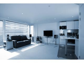 Light & Airy Lounge - Stunning Canalside Apartment in Central London - London - rentals