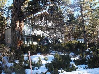 Absolute Comfort Chalet - Big Bear Lake vacation rentals