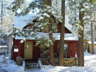 Adorable 2 bedroom House in City of Big Bear Lake - City of Big Bear Lake vacation rentals