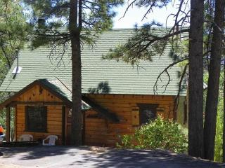 Squirrel's Nest - Big Bear and Inland Empire vacation rentals