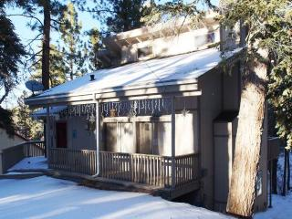 Gorgeous 3 bedroom House in Big Bear City - Big Bear City vacation rentals
