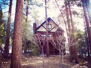 Wishing Bear Lodge - Big Bear Area vacation rentals