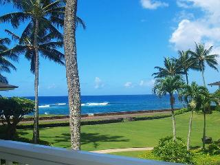 Poipu Kapili 46: spacious, great view, close to beach in sunny Poipu + A/C - Koloa vacation rentals