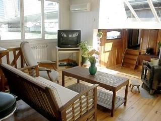 Live on the Seine Houseboat Grenelle  #299 - Ile-de-France (Paris Region) vacation rentals