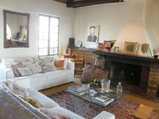 Idyllic home w/terrace and view-3BR 5thArrond #231 - 4th Arrondissement Hôtel-de-Ville vacation rentals