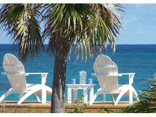 Lovely  Beach & Snorkeling - Summer Rates $200/nt - North Palmetto Point vacation rentals