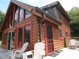 Secluded Luxury Log Cabin 2 Miles to Snowshoe Hot Tub WiFi - Snowshoe vacation rentals