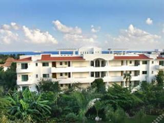 Riviera Maya Suites - Image 1 - Playa del Carmen - rentals