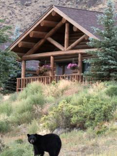 Perfect Cabin with Deck and Internet Access - Gardiner vacation rentals